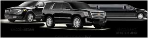 Orlando limousine rentals